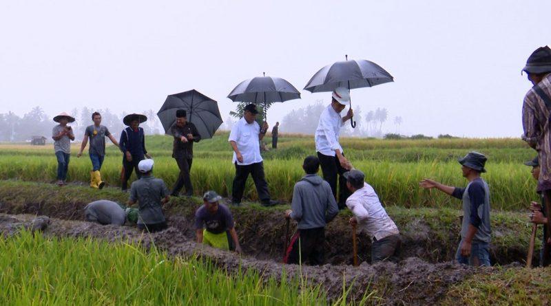 Presiden Meninjau Pelaksanaan Padat Karya Tunai di Tanah Datar